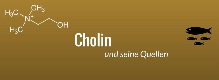 cholin und seine quellen