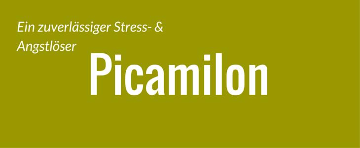 picamilon gegen stress und angst