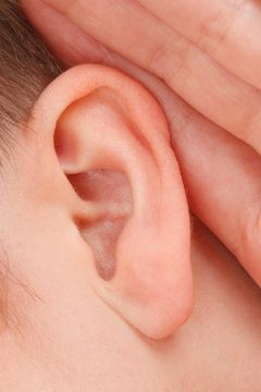 tinnitus ohr