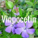 vinpocetin-128x128